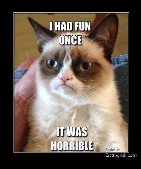 10 Grumpy cat