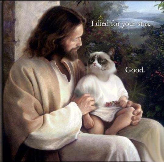 14 Grumpy cat jesus