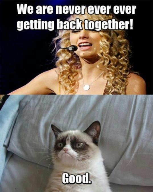 7 Grumpy cat Taylor Swift