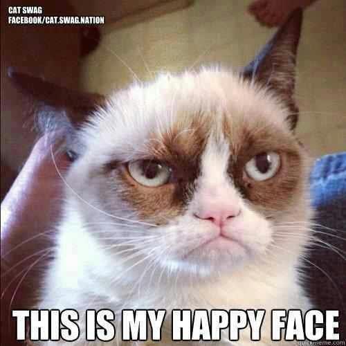 Grumpy cat first chapter