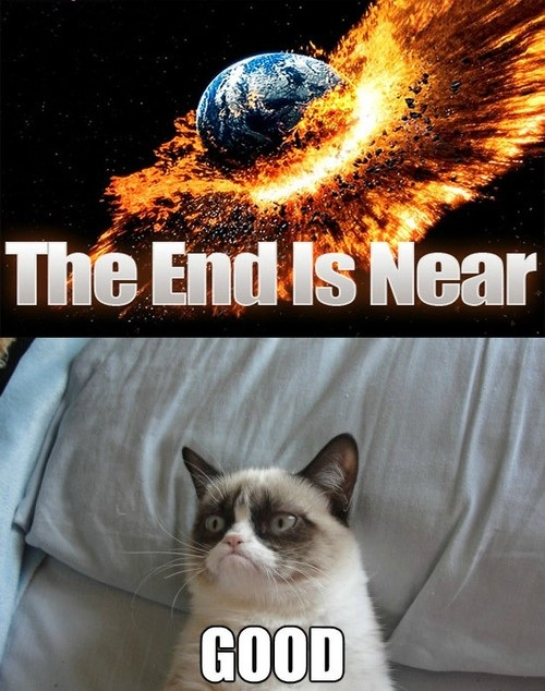 9 Grumpy cat end of the world